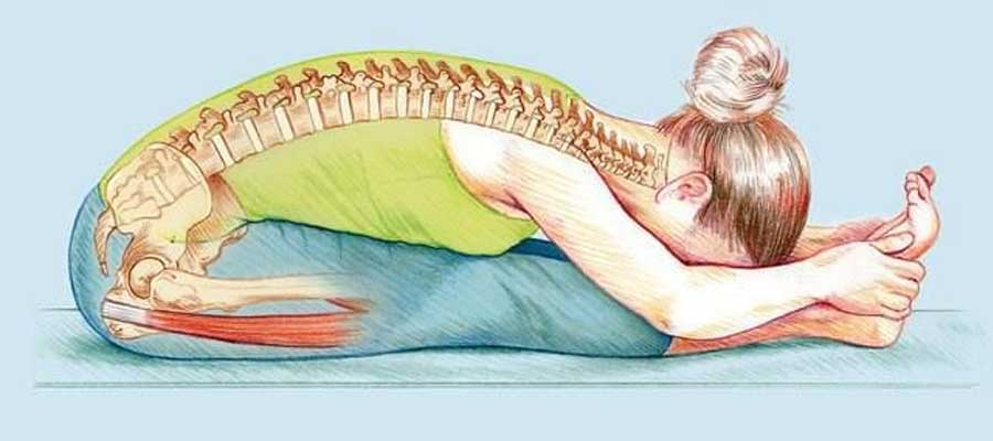 paschimottanasana steps for beginners